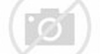 Iringan Pengantin Bugis Paket Rias Hervina