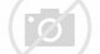 Curhatan PSK Dolly yang Ditulis untuk SBY