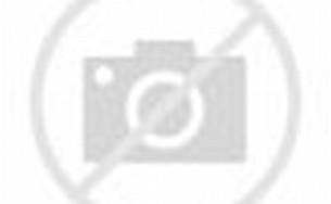Dunlop Tortex Guitar Picks