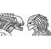 How To Draw Alien Vs Predator Step 25