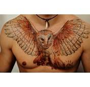Tatuaje De Las Siluetas Un Perro Y Gato  Tatuajes