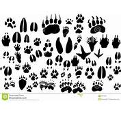 Collection Of Vector Outlines Animal Foot Print Stock Images