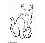 Pin Gatos Dibujos Gato En Caricatura Gatitos Para Colorear Dibujo De