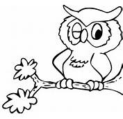 Owl Coloring Pages  Town