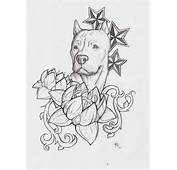 Pitbull Drawings Tattoo Images &amp Pictures  Becuo