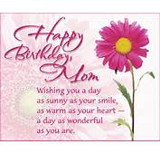Birthday Quotes Funny Pic