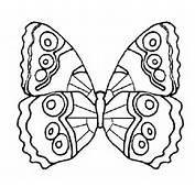 Papillons Papillon Coloriage