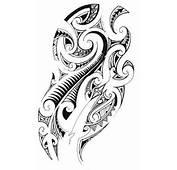 Kiwi Fern Design  Flickr Photo Sharing