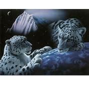 White Tigers  Fantasy Creatures Wallpaper Image