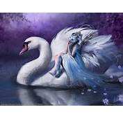 Fairy  Fairies Wallpaper 23564201 Fanpop