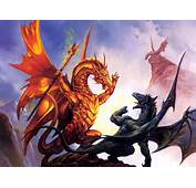 Dragons Fighting  Wallpaper 26589209 Fanpop