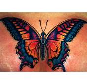 Above The Tattoo Artists Has Given This Dragon Butterfly Wings To
