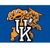 Kentucky Wildcats Logo 1  Pinterest