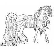 Horse Coloring Pages  Picture 1 – Free Printable Best