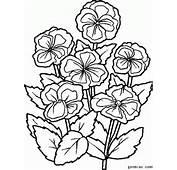 简笔画花朵2 花简笔画 简笔画图片大全 根苗�