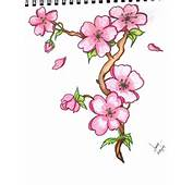 Drawing Flowers  3D