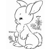 Easter Bunny Coloring Pages  BlueBonkers Cute Free Printable