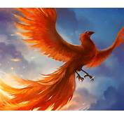 Phoenix By Sandara On DeviantArt