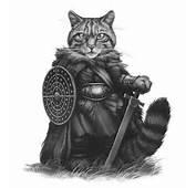 Scottish Highlander Warrior A  Wildcat