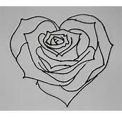 Attempt Of Rose Heart Drawing  Nickicolem © 2015 Sep 5 2010
