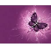 Butterfly  Butterflies Photo 32607917 Fanpop