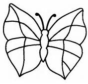 Coloriages Papillons  3 022