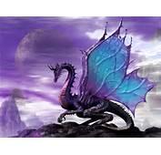 Purple Dragon Productions