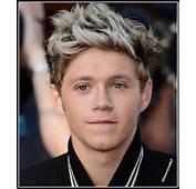 Niall Horan 2013  One Direction Photo 35359792 Fanpop