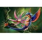 Most Beautiful Animals  HD Wallpaper