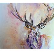 Animals Pinterest Watercolours Beautiful Tattoos And A