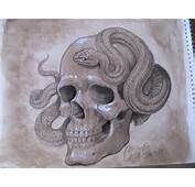 Human Skull Tattoos Designs Tribal Sugar Amp Evil Picture 7453