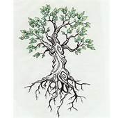 Tree Tattoo By Kittencaboodles On DeviantArt