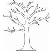 Beautiful Tree Mural