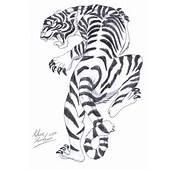 White Tiger By Aidan8500 On DeviantArt