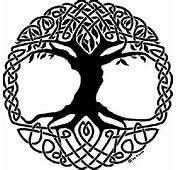 Celtic Symbol Tree Of Life  Paganism Photo