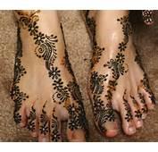 Pakistani Mehndi Design Free Designs Tattoo