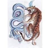 Tiger Dragon Tattoo Flash