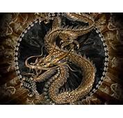 张高清中国龙纹饰图片 1600 X 1200 像素,中国龙古典