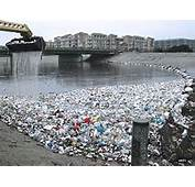 Plastic Water Bottles In Landfills Images &amp Pictures  Becuo