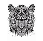Adult Coloring Pages &gt Animals Tiger