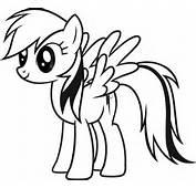 My Little Pony La Magia De Amistad Rainbow Dash Brony