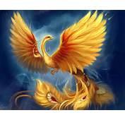 Phoenix Rising Detail From Aberdeen Bestiary