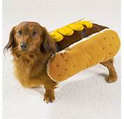 Hot Dog With Mustard Halloween Costumes