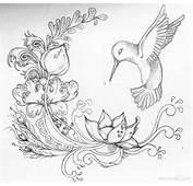 Rose Flower Drawings Lotus
