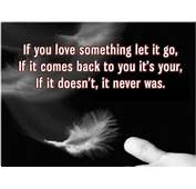 Miracle Of Love Quotes
