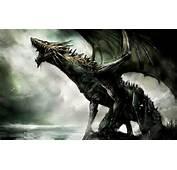 Fantasy Dragon  Dragons Wallpaper 27155051 Fanpop