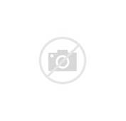 Colorful Tattoo Of A Sunset On Beach With Hibiscus Flowers