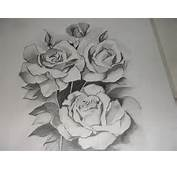 Pencil Sketches Of Flowers Sketch