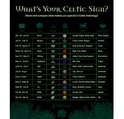 Your Celtic Tree Astrology Signs And Meanings