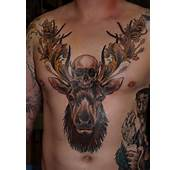 Deer Tattoos – Designs And Ideas
